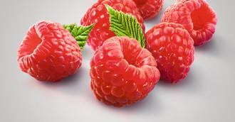 Fruchtpüree Himbeere
